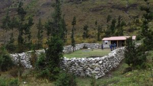 苗床小屋の全景
